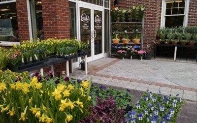 Studley's Flower Gardens