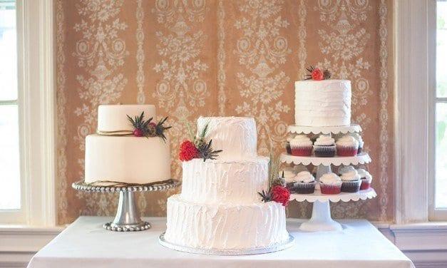 Cake vs. Cupcake