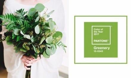 2017 Pantone Color