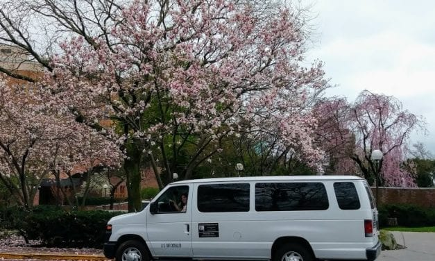 Cherry Tree Transportation